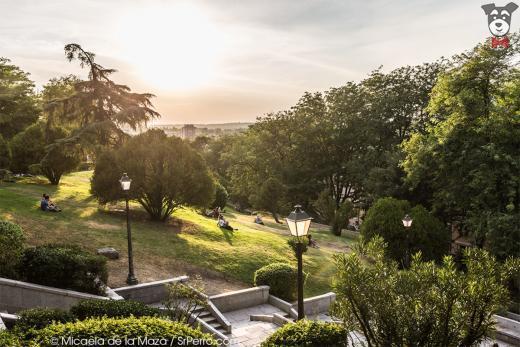 19 parques y jardines preciosos en madrid for Jardines de las vistillas
